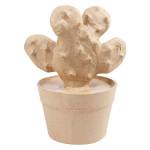 Cactus raquette 9,5 x 13 x 16,5 cm