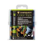 Embout Color Tops pour marqueur Chameleon 5 tons de la terre