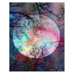 Peinture par numéros Pleine Lune aux reflets multicolores
